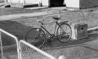 'Bicycle' 1977