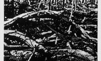 Untitled charcoal drawing UTDD02 1979 (1500 x 2250 mm)