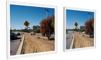 Nature Strip, digital mock-up of diptych
