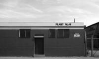 'Plant 9' 1977